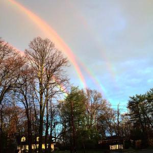 quad_rainbow